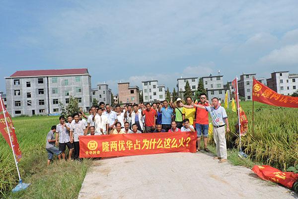 全县各乡镇零售商和种植大户等80余人前往七琴镇现场观摩.